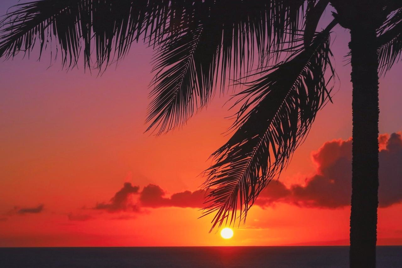 Maui jour 2